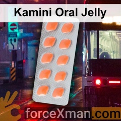 Kamini Oral Jelly 375